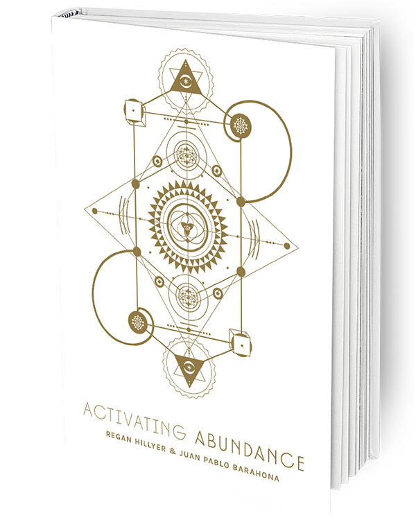 The Activating Abundance Book