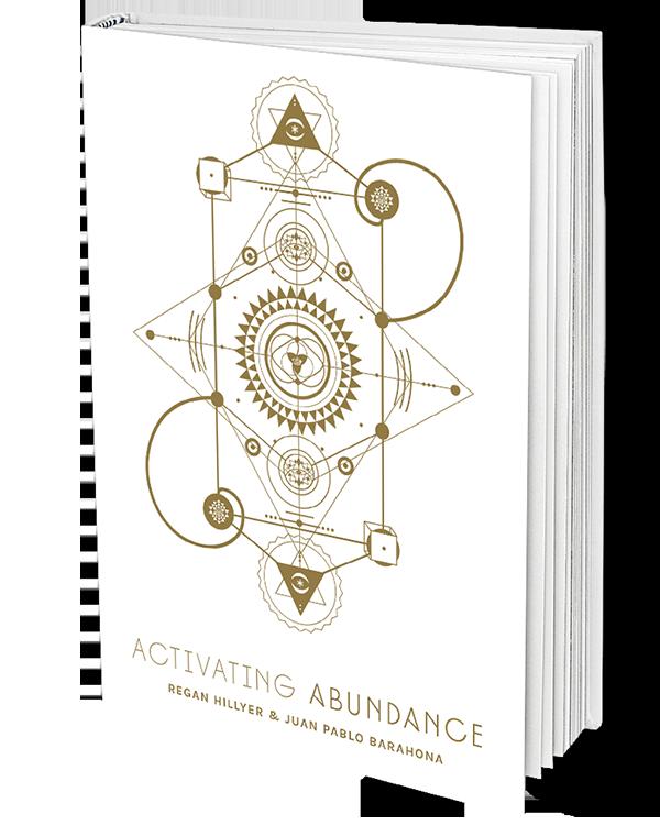 The Activating Abundance Book